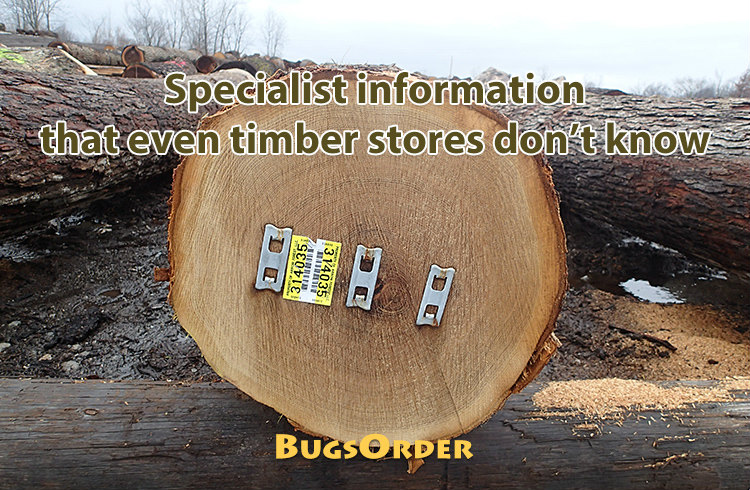 that even timber stores don't know
